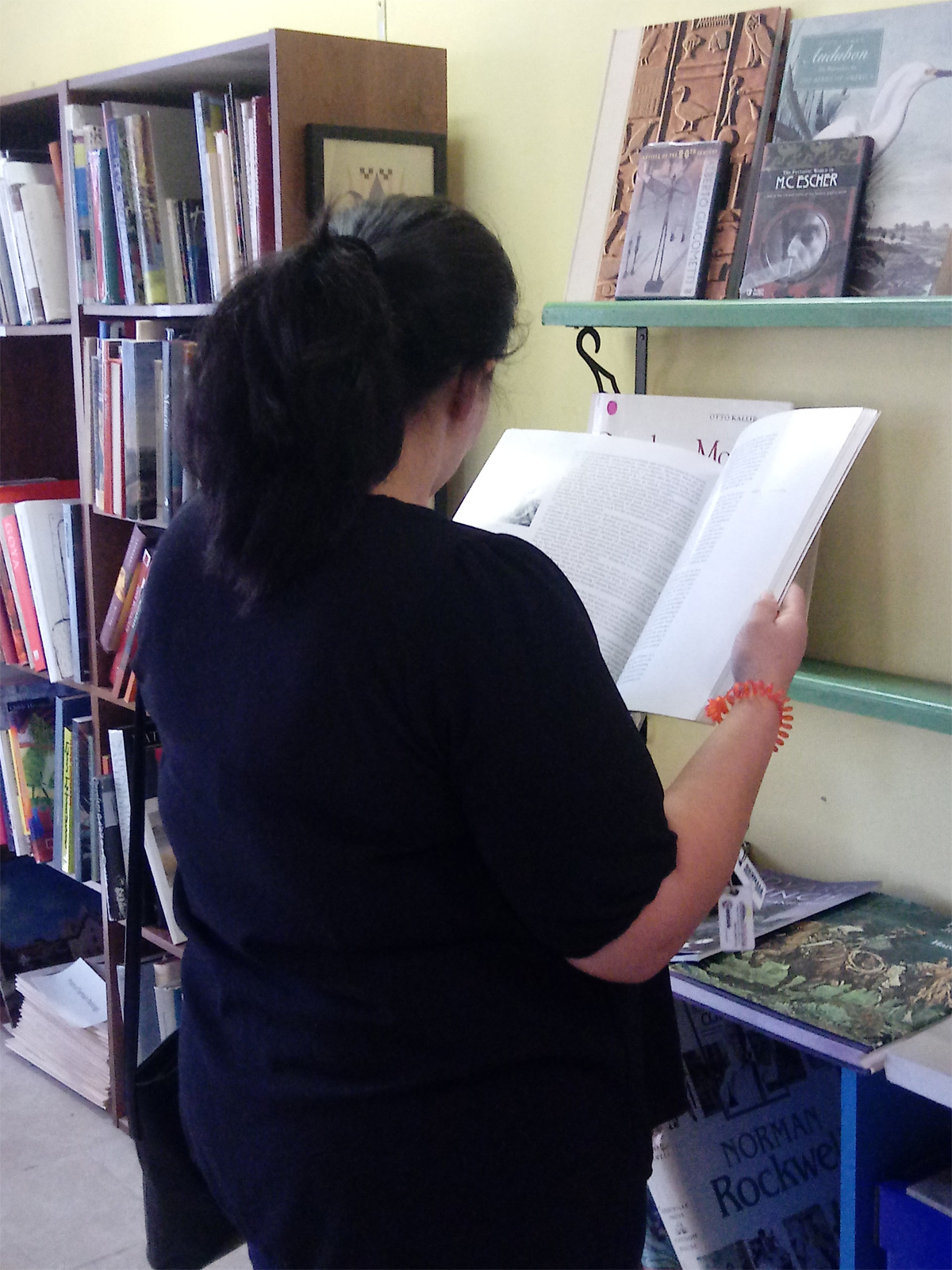 Visitor Reading in the Fox Art Library