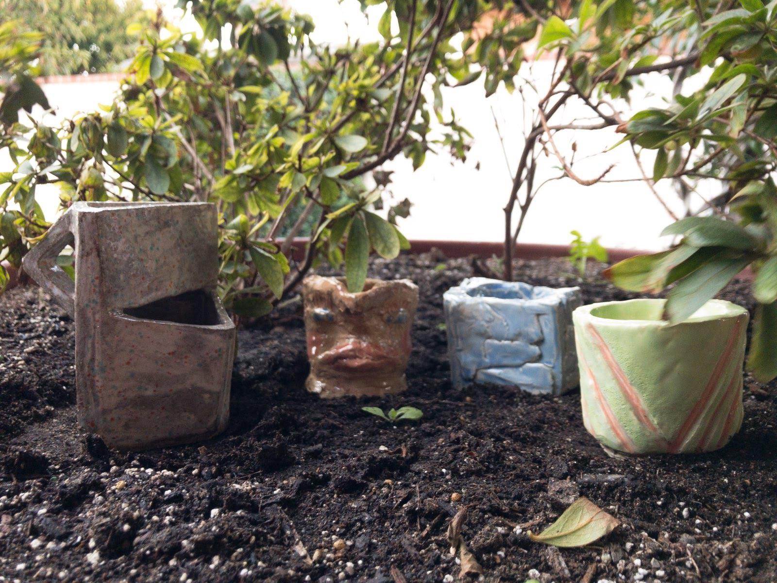 Variety of Cups and Pots in the Garden